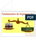TODO COGENERACIÓN .pdf