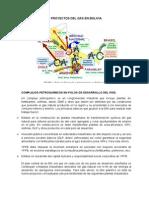 PROYECTOS DEL GAS EN BOLIVIA.docx