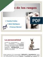 55539594-TEORIA-DE-RASGOS.pdf