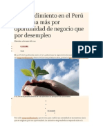 Emprendimiento en El Perú Se Origina Más Por Oportunidad de Negocio Que Por Desempleo