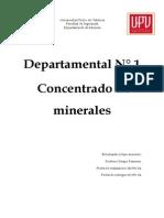 Concentrado y Procesamiento de Minerales