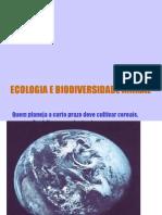 ECOLOGIA E BIODIVERSIDADE ANIMAL.ppt