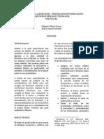 Informe-Práctica-1.pdf