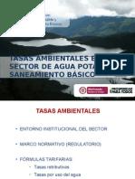 3.TASAS AMBIENTALES Mesoamerica 2013 (1).pptx