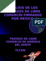Tratado s