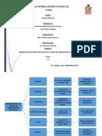 Diferencias entre los niveles de organización ecológica.