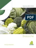 BrochureBRASSICHE+kl