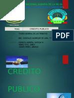 Credito Publico (1)