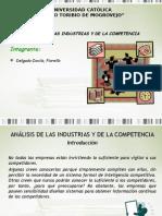 Analisis de La Industria y La Competencia 1222175300867388 8