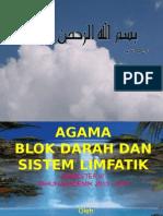 Blok Darah Dan Limfatik 2013