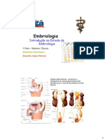 Embriologia (2)
