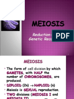 Cell-Lec6-meiosis reductiodivision-forBB.ppt