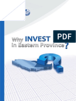 Why Invest in eastern province