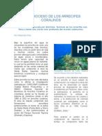 LOS ARRECIFES CORALINOS- articulo divulgativo.docx