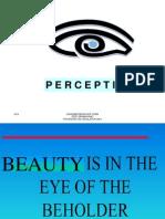 CB Perception