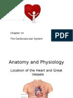Cardiac.pptx