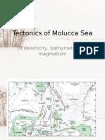 Tectonics of Sulawesi