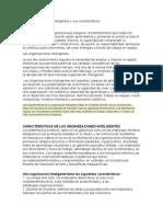Las Organizaciones Inteligentes y Sus Características Reporte