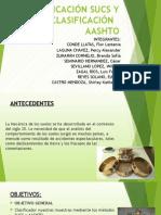 Clasificación Sucs y Clasificación Aashto