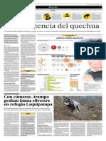 La persistencia del quechua