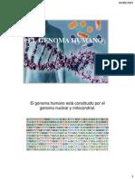 1. Genoma Humano 2015