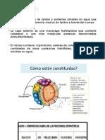 Quilomicrones