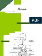 Abdomen Assessment Final