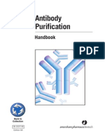 Antibody Purification