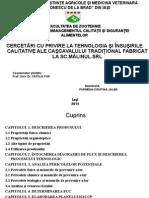 HACCP Cascaval
