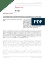 Verónica Ocvirk. Más Allá de La Soja. El Conocimiento Como Fuente de Divisas. El Dipló. Edición Nro 194. Agosto de 2015