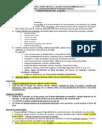 TP Nº4 (Integrador Final - Con Evaluación)