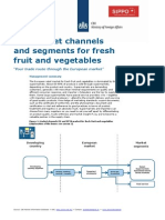 CBI Channels Segments Europe Fresh Fruit Vegetables 2014