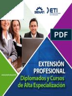Brochure Diplomados