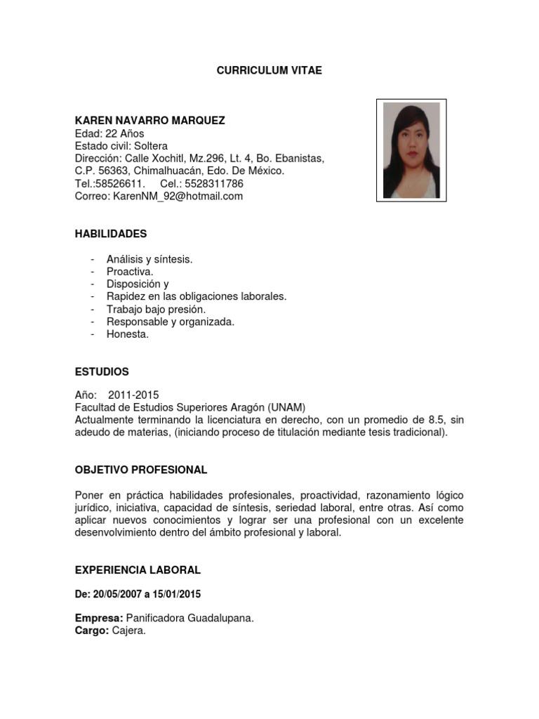 Dorable Resume De Ejemplo De Cajero Viñeta - Ejemplo De Colección De ...