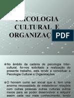 Psicologia Cultural e Organiza__es. Inter
