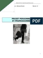 Formation Initiale PPP S2 - Dossier de Projet Personnel Et Bilan Professionnel
