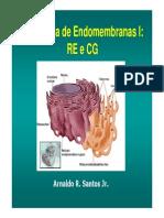 Aula6_Retículo Endoplasmático e Complexo de Golgi 2015-3