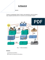 E-Folio B Aluno 1303354 Susana Sousa Marques.pdf