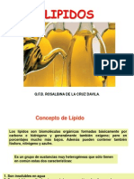 Clase 1 Farmacognosia II Lipidos Carrion. 2015 II