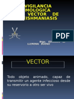 vigilancia vectorial lutzomyia RSH Mayo-14.ppt