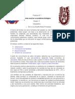 Práctica-1-biologia-QBP.docx