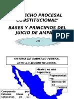 Bases y Principios Del Juicio de Amparo