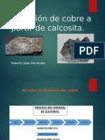 Calcosita Roberto