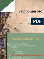Tecidoadiposo Atual 130315074417 Phpapp02