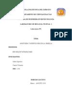 Lab 1 La Semilla 1291SiguenzaVelandia.docx1