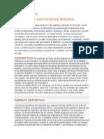 Clasificacion y Caracteristicas de Un Parrafo.