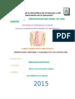 Diagnostico de Gestacion y Mortalidad Materna