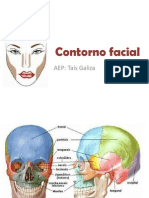 006 Contorno Facial