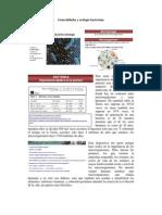 Generalidades y Ecología Bacteriana