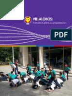 Instructivo Villalobos 2015.